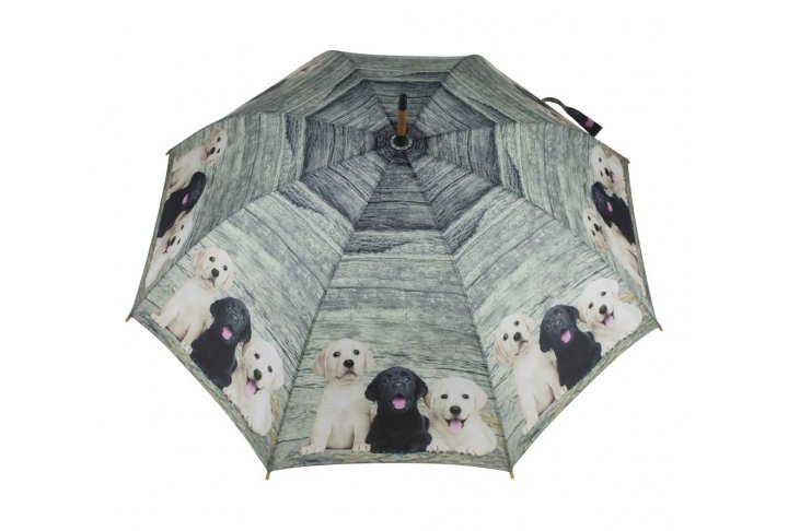 Paraplu hout labrador pups