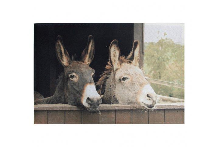 Deurmat twee ezels