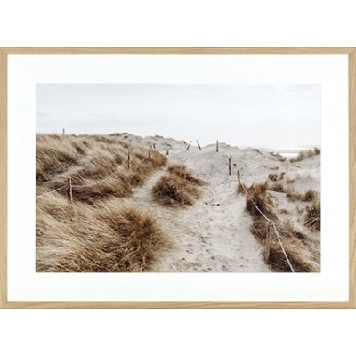 Kader beach dune