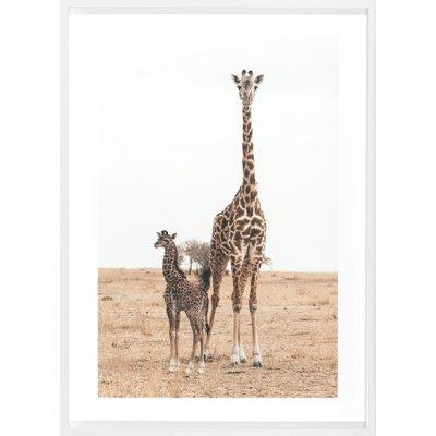 Kader mother and baby giraffe