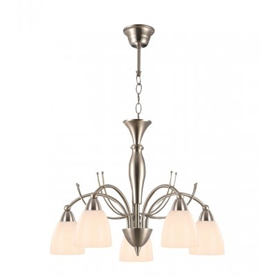 Malin hanglamp  brushed steel 5xe14 40w excl