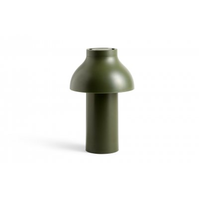 Pc portable lamp olive led incl
