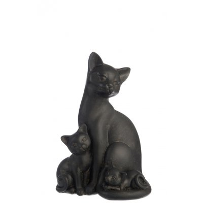 Kat met kitten bruin