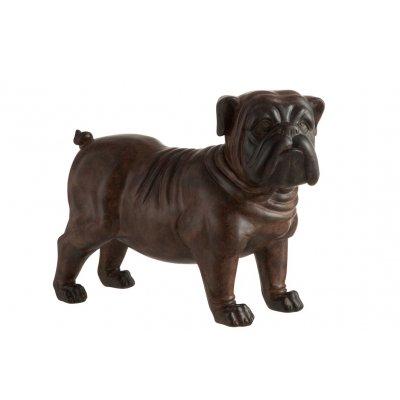 Bulldog bruin l