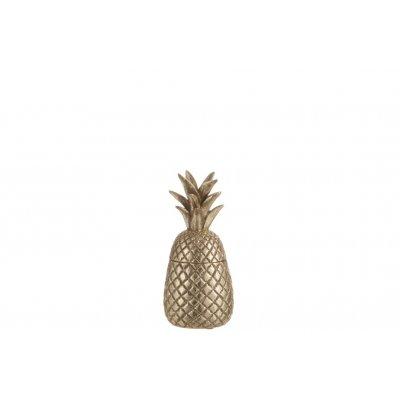 Voorraadpot ananas s