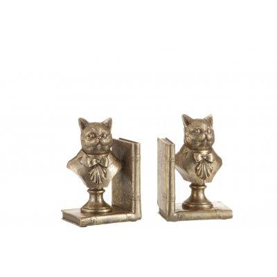 Boekhouder kat goud