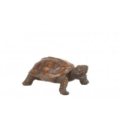 Schildpad bruin smal