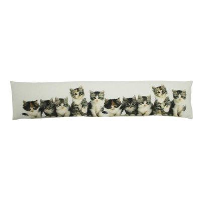 Tochtkussen kittens