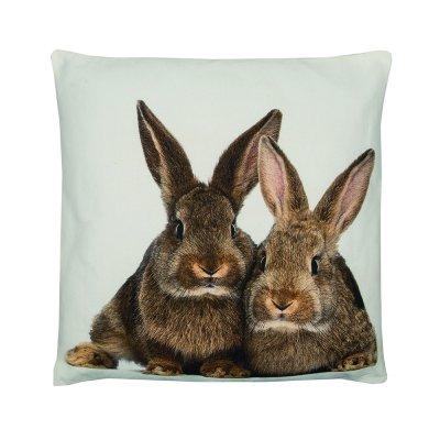 Kussen konijnen