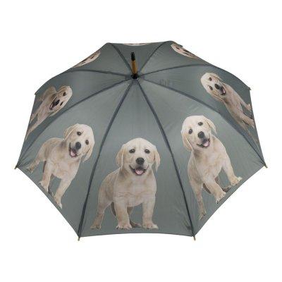 Paraplu hout labrador
