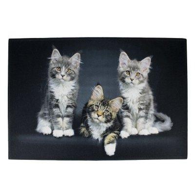 Deurmat zwart 3 kittens