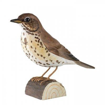 Decobird song thrush